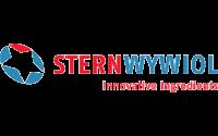 Sternwywiol Logo | Perspektive Media